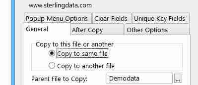 CopyFlash Clarion template